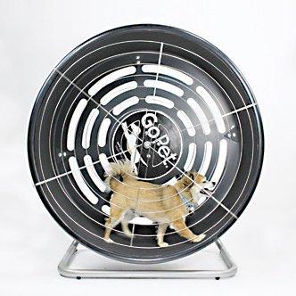 treadwheel