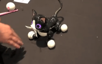 Zoomer Kitty: Smart Cat Interacts with You