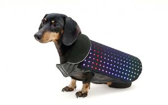 Disco Dog: Smartphone Controlled LED Dog Vest