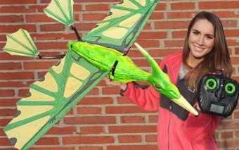 5′ RC flying Pterodactyl