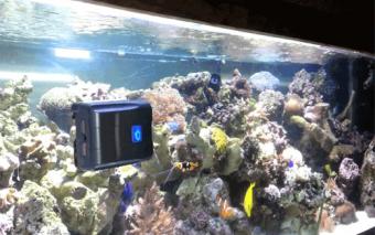AquaGenisis Robosnail Robotic Aquarium Glass Cleaner
