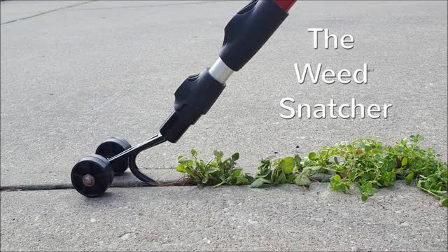 Weed Snatcher Removes Weeds from Cracks & Crevices