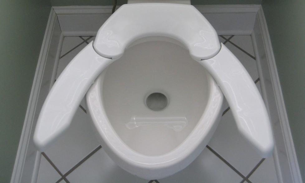 adjustable toilet seat