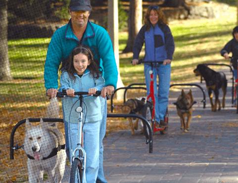 dog powered trike