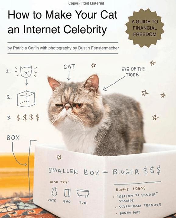 cat celebrity