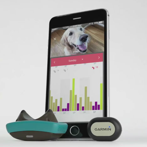 garmin-delta-smart-dog-training-device