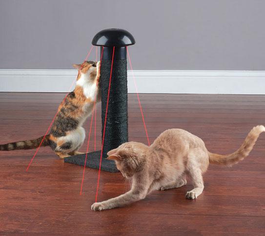 laser-chasing-scratch-post