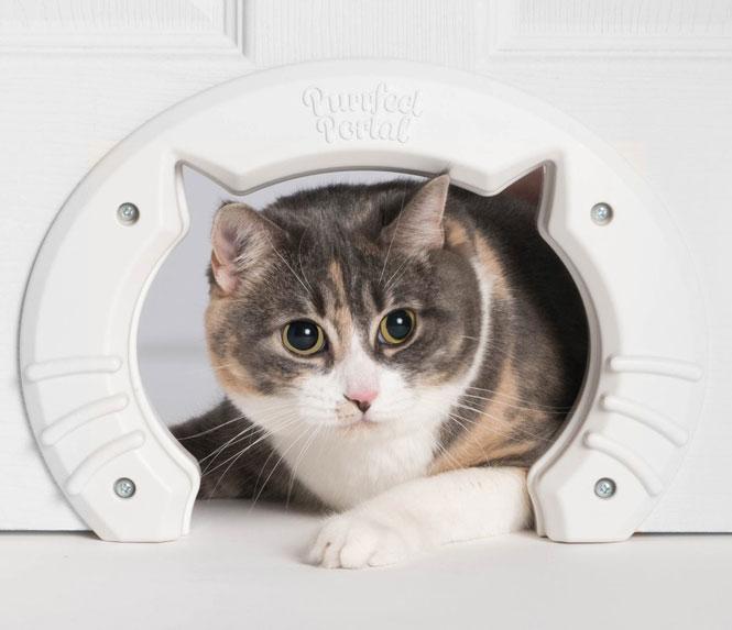 purrfect-portal-interior-cat-door